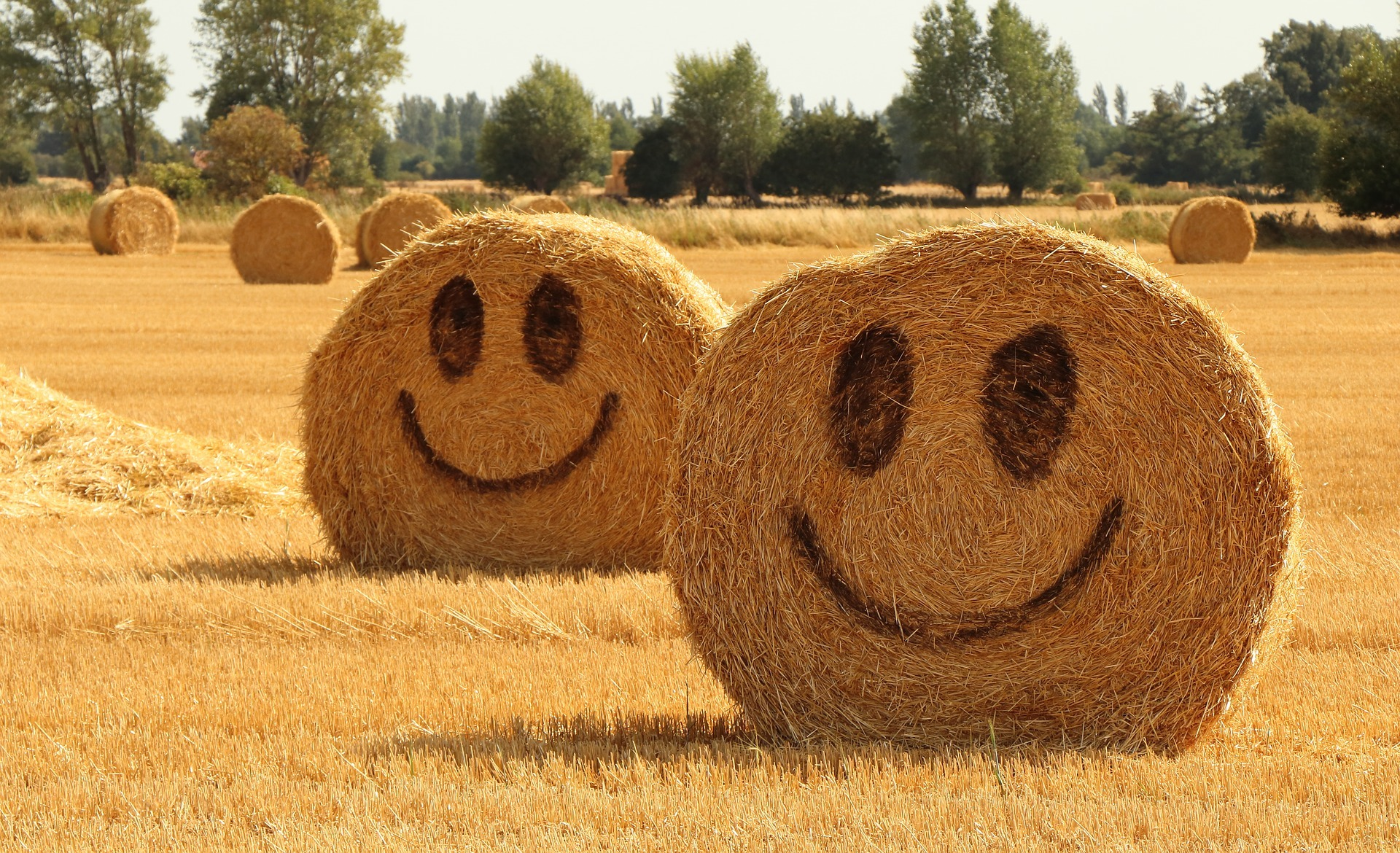 happy_straw
